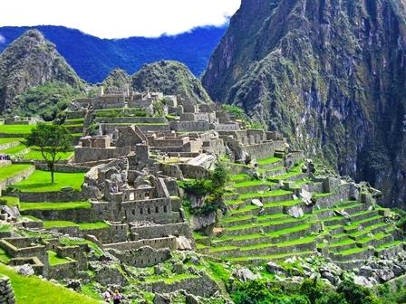 Peru Bio